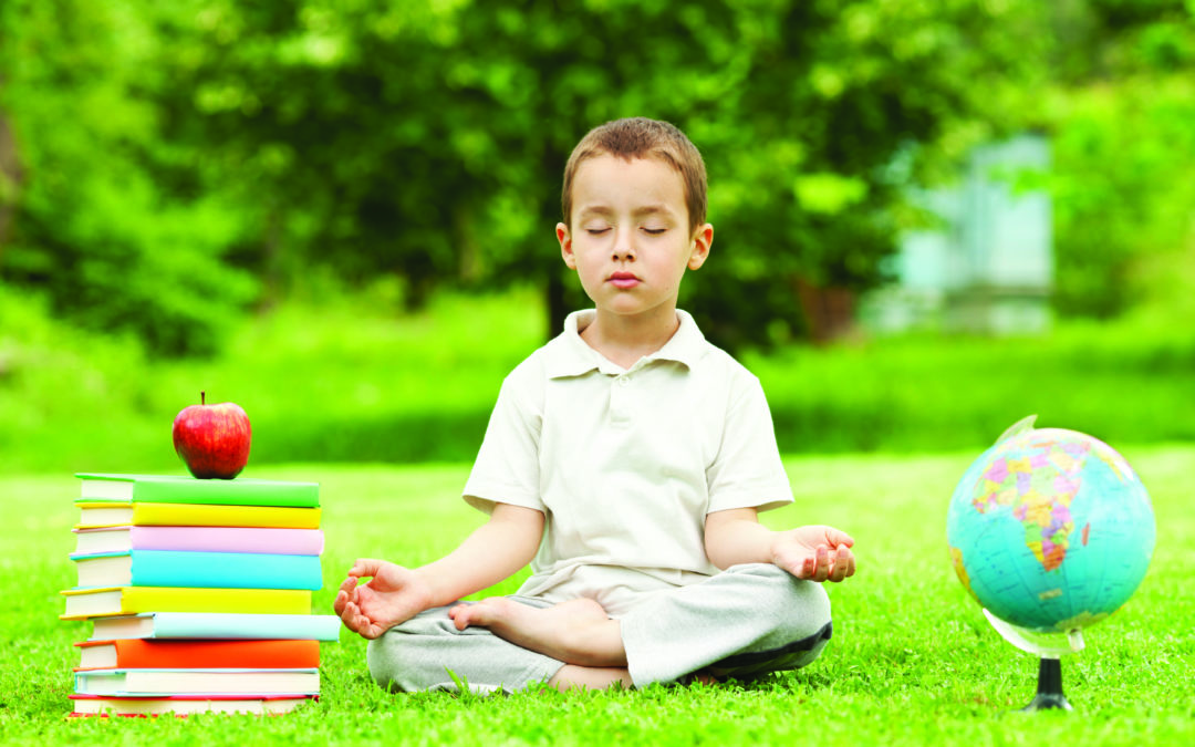 Bringing Consciousness to Education